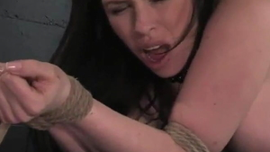 Hard whip escorted by bimbo slut Daphne Rosen